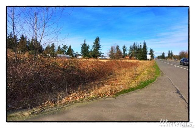 0-Lot 2 Guide Meridian, Lynden, WA 98264 (#1410554) :: Ben Kinney Real Estate Team