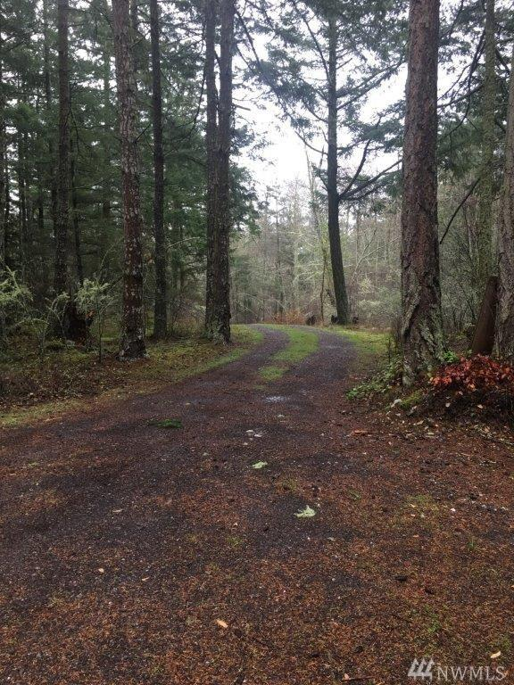 130 Spring Point Rd, Orcas Island, WA 98243 (#1412408) :: Real Estate Solutions Group