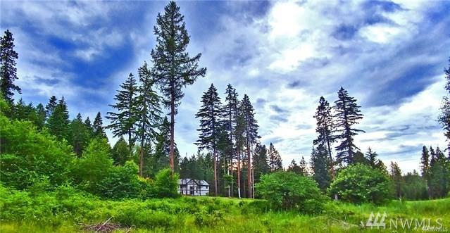 0-Lot 6 Hermitage Dr, Cle Elum, WA 98922 (#1415306) :: Costello Team