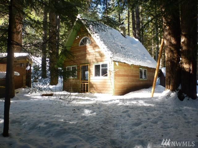 87224-NE 121st St, Skykomish, WA 98288 (#1416154) :: Ben Kinney Real Estate Team