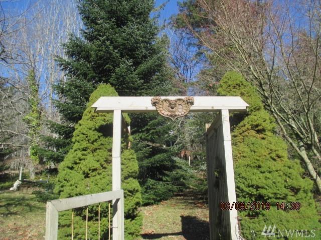 141 Oak St, Quilcene, WA 98376 (#1416646) :: Crutcher Dennis - My Puget Sound Homes
