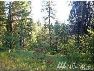 113940 (Lots 11, 39, 40) Lillooet Dr, Inchelium, WA 99138 (#1418014) :: Better Properties Lacey