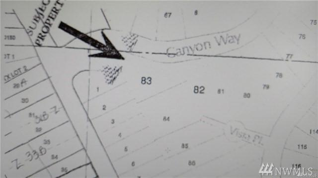 0 Canyon Wy, Taholah, WA 98587 (#1420404) :: The Royston Team