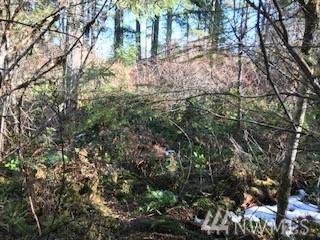 0 W Buck Prairie Rd W, Elma, WA 98541 (#1421732) :: Crutcher Dennis - My Puget Sound Homes