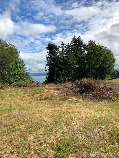 0-Lot 4 Cascade View Dr, Camano Island, WA 98282 (#1424797) :: Crutcher Dennis - My Puget Sound Homes