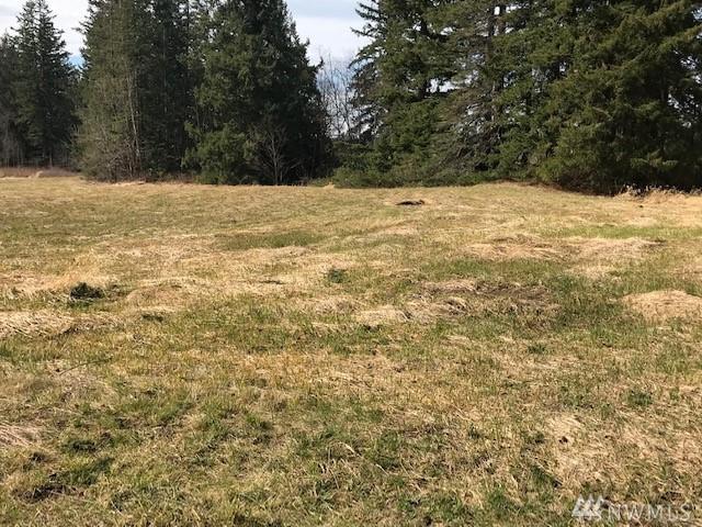 43-xx Dewey Rd, Bellingham, WA 98226 (#1427634) :: Canterwood Real Estate Team