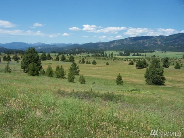 850-(Lot 9) Leo Lane, Cle Elum, WA 98922 (#1427881) :: Kimberly Gartland Group