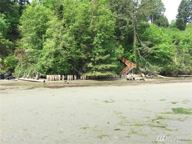 3005 Thoren Shores Dr, Lakebay, WA 98349 (#1428156) :: Crutcher Dennis - My Puget Sound Homes