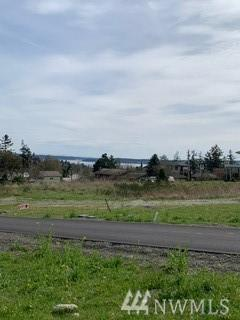 999 30th (Lot 2 Blk20 Hastings) St, Port Townsend, WA 98368 (#1431456) :: Ben Kinney Real Estate Team