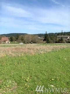 999 30th (Lot 3 Blk20 Hastings) St, Port Townsend, WA 98368 (#1432501) :: McAuley Homes