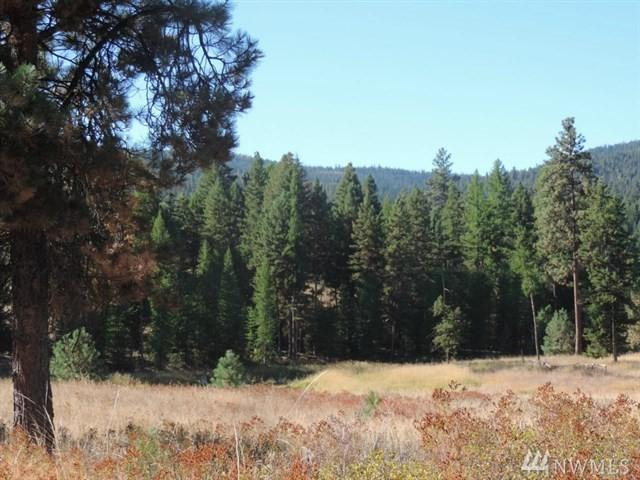 88 Corral Dr, Oroville, WA 98844 (#1432688) :: Northern Key Team