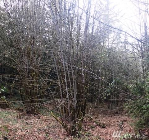 0-Lot10-12 Wyoming St, Port Orchard, WA 98366 (#1434536) :: Commencement Bay Brokers