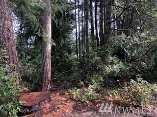 5415 W Old Stump Dr NW, Gig Harbor, WA 98332 (#1436934) :: Canterwood Real Estate Team