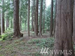 10101 Provost Rd, Silverdale, WA 98370 (#1438237) :: NW Home Experts