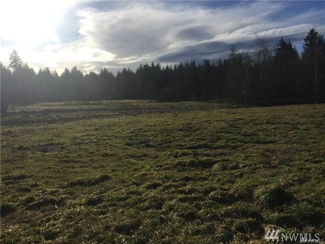 0 Highway 508, Onalaska, WA 98570 (#1439075) :: Better Properties Lacey