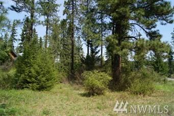 89 Single Jack Ct., Cle Elum, WA 98922 (#1442893) :: Chris Cross Real Estate Group