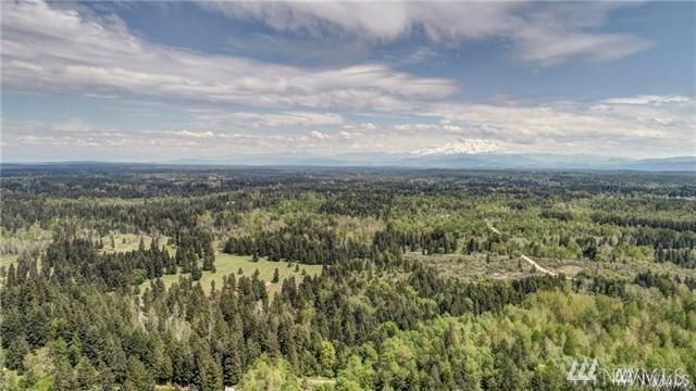 0-xxx Harts Lake Rd S, Roy, WA 98332 (#1444013) :: Real Estate Solutions Group