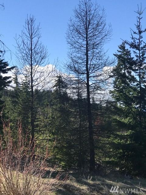 0 Alpineview Dr, Cle Elum, WA 98922 (#1444207) :: Kimberly Gartland Group