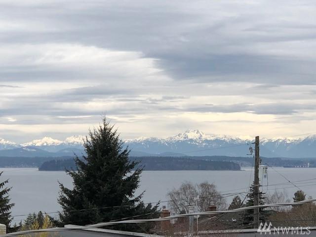4010 SW Director St, Seattle, WA 98136 (#1444759) :: McAuley Homes