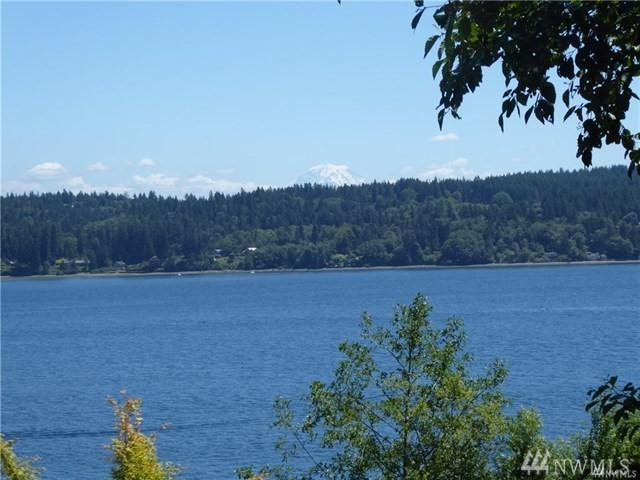 10509 SE Vashon Vista Dr, Port Orchard, WA 98367 (#1446315) :: Northern Key Team