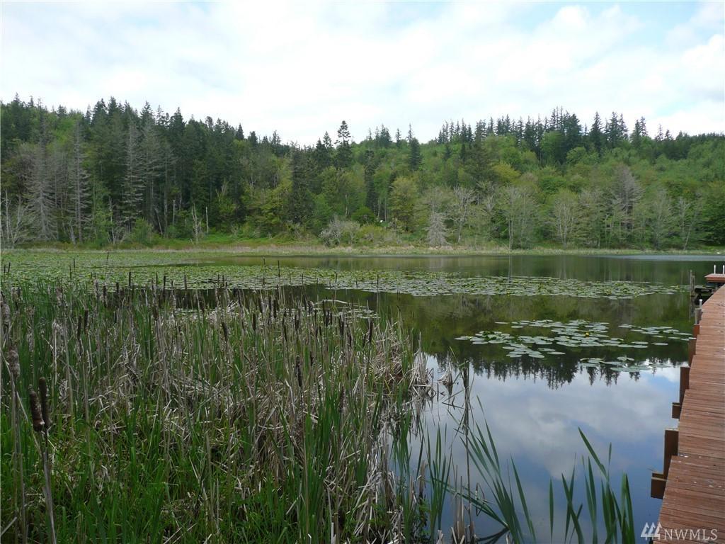 0 Rice Lake Rd - Photo 1
