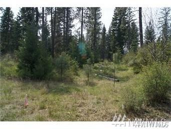 2080 Coal Mine Wy, Cle Elum, WA 98922 (#1452712) :: Homes on the Sound