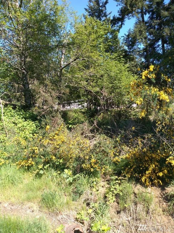 180 E Wood Lane, Shelton, WA 98584 (#1453970) :: Keller Williams Western Realty