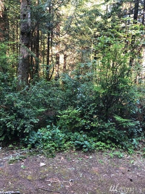 6405 Stone Farm Lane NW, Seabeck, WA 98380 (#1455031) :: Keller Williams Realty