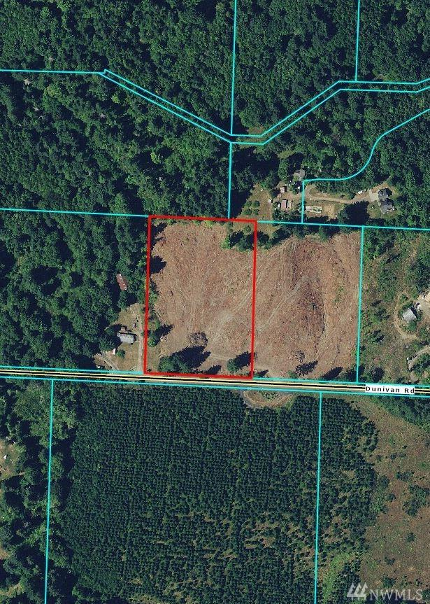 0-XXX Dunivan Rd, Vader, WA 98593 (#1456315) :: Homes on the Sound