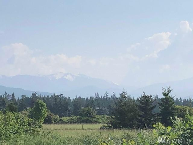 999 Laura - Parcel A Lane, Sequim, WA 98382 (#1456362) :: Canterwood Real Estate Team
