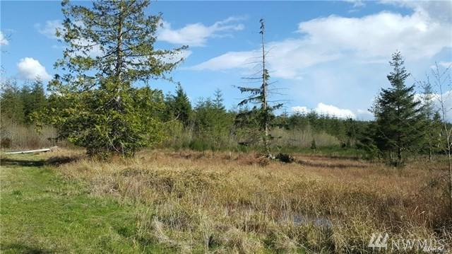 0-Lot#1 Dancing Deer Wy, Seabeck, WA 98380 (#1456939) :: The Royston Team