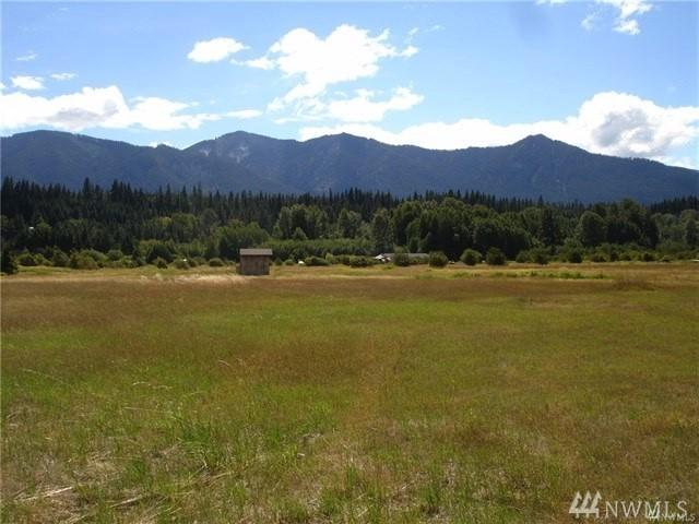 611 Little Creek Rd, Cle Elum, WA 98922 (#1457477) :: Homes on the Sound