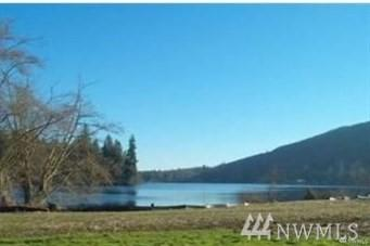 0 Lot 7 Willabelle Place, Mount Vernon, WA 98274 (#1459390) :: The Kendra Todd Group at Keller Williams