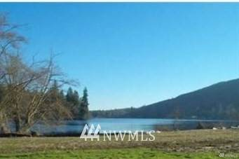 0 Lot 3 Willabelle Place, Mount Vernon, WA 98274 (#1459391) :: Alchemy Real Estate