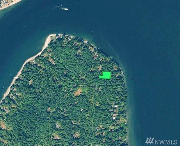 17122 Kinnear Rd NE, Bainbridge Island, WA 98110 (#1460756) :: Mike & Sandi Nelson Real Estate