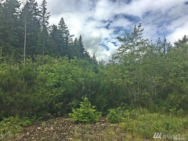 0-XX Lot A Alvord St, Darrington, WA 98241 (#1461312) :: Real Estate Solutions Group