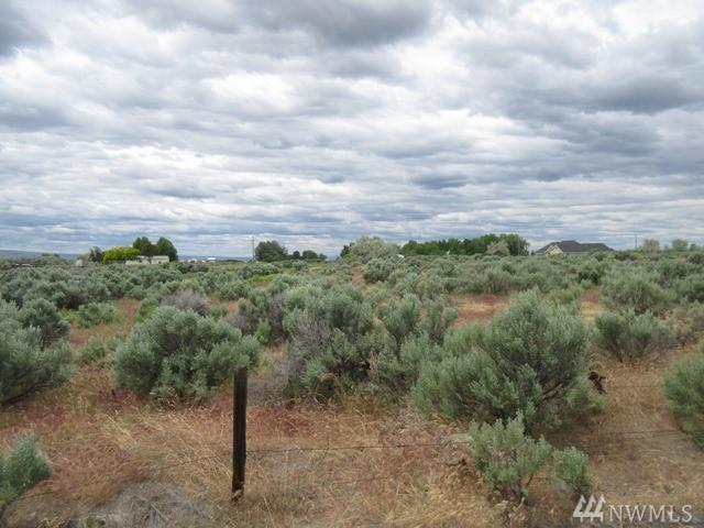 0-NNA S Griffin Rd, Prosser, WA 99350 (#1462585) :: Kimberly Gartland Group
