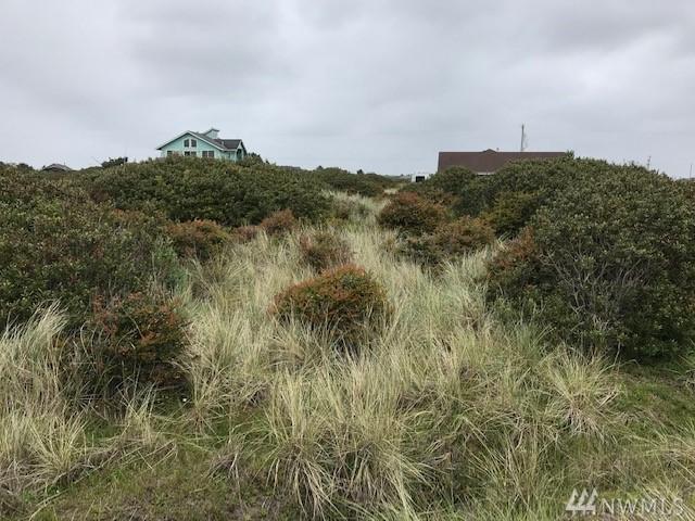 1024 S Sand Dune Ave SW, Ocean Shores, WA 98569 (#1462602) :: The Robert Ott Group