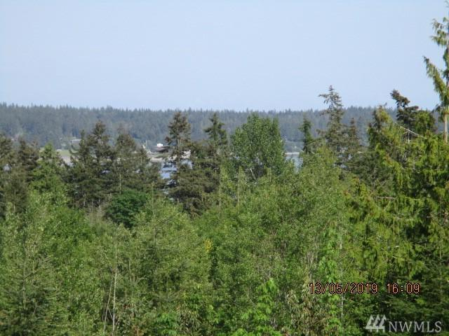 47 Lincoln St, Port Hadlock, WA 98339 (#1463495) :: Homes on the Sound