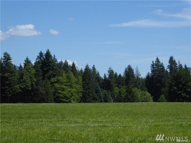 1-lot 3 296th St NE, Stanwood, WA 98292 (#1464692) :: Real Estate Solutions Group