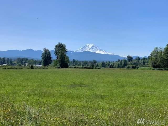 268-xx E Buckley/Sumner Hwy E, Buckley, WA 98321 (#1467255) :: Real Estate Solutions Group