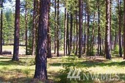 1810 Coal Mine Wy, Cle Elum, WA 98922 (#1471112) :: Record Real Estate