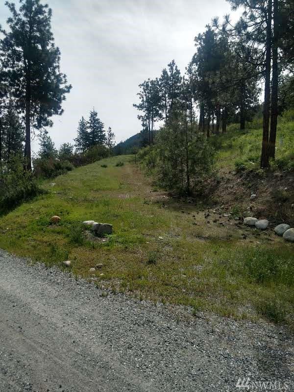 260 Bear Ridge Lane, Chelan, WA 98816 (#1472121) :: Kwasi Homes