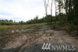 0 Larmon Rd, Onalaska, WA 98570 (#1474210) :: Ben Kinney Real Estate Team