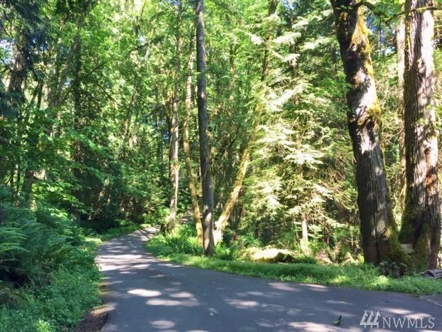 114-XX 207th Ave SE, Issaquah, WA 98027 (#1474310) :: Kimberly Gartland Group