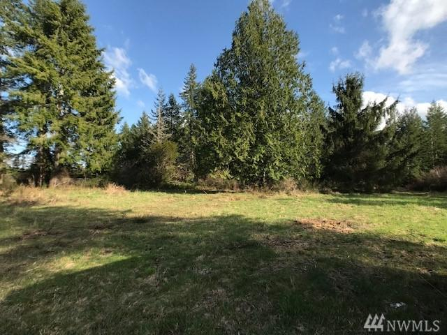 13251 W Cloquallum Rd, Elma, WA 98541 (#1475159) :: Real Estate Solutions Group