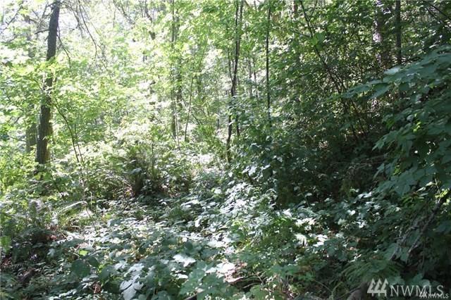 160-XX Cedar Grove Rd SE, Maple Valley, WA 98038 (#1475278) :: Record Real Estate