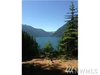 19 Ws1 Bl 3 Lot 19B, Hoodsport, WA 98548 (#1475657) :: Kwasi Homes