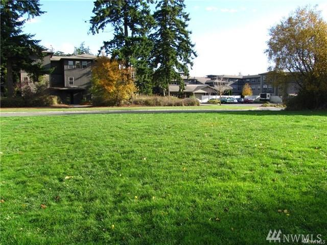 1203 Rosecrans St, Port Townsend, WA 98368 (#1476742) :: Crutcher Dennis - My Puget Sound Homes
