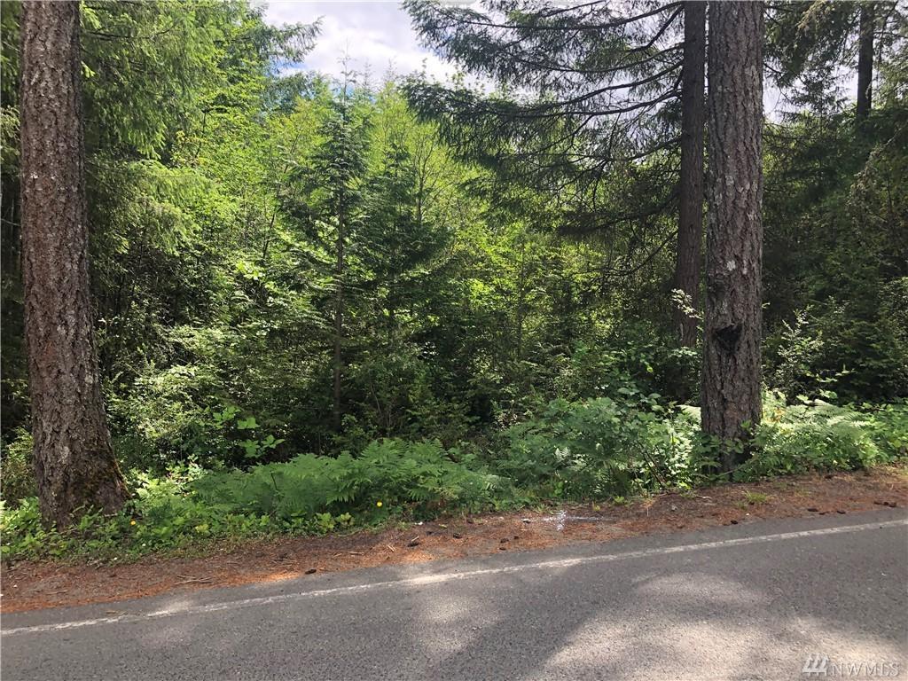 331 Lakeland Dr - Photo 1